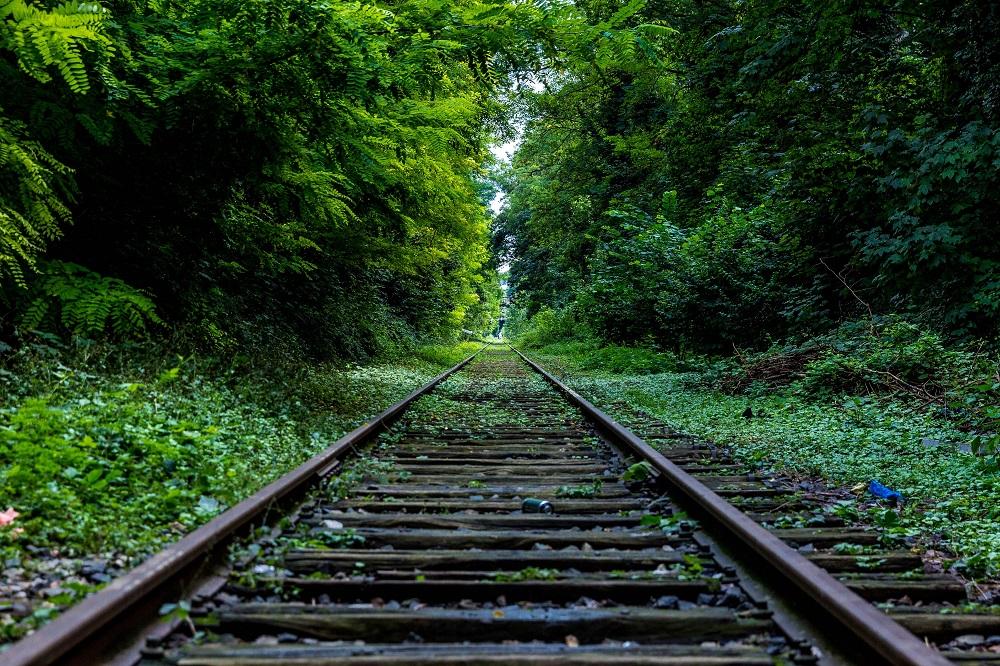 Mobilità sostenibile: la rivincita del treno che va a idrogeno